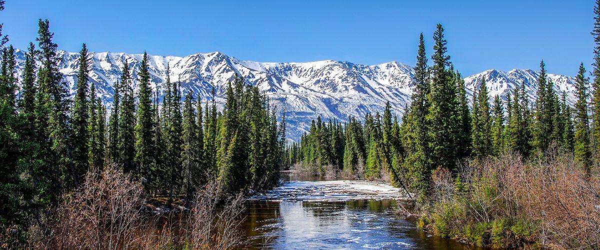 Is Marijuana Legal in Alaska?