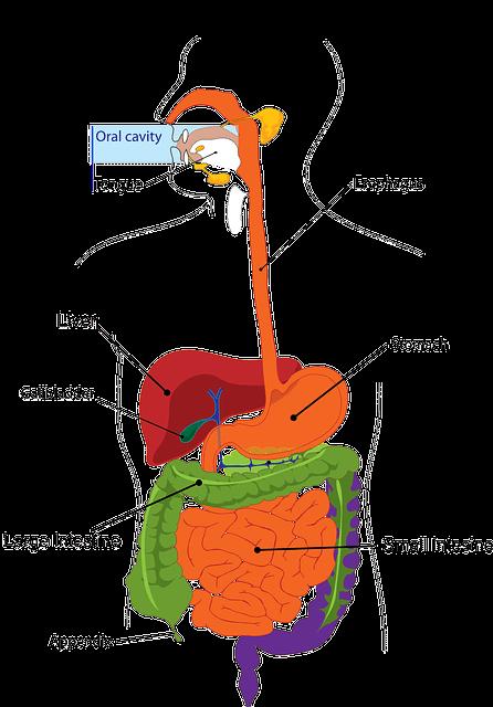Crohn's Disease - Medical Marijuana Research