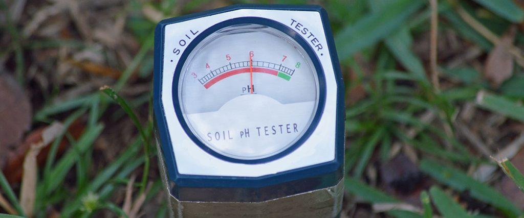 pH tester for cannabis