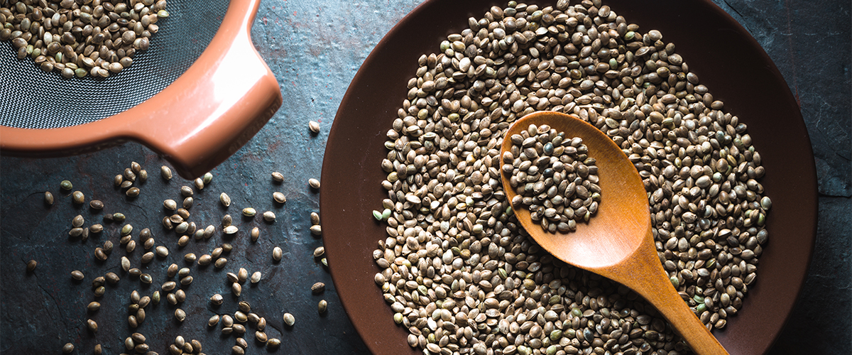 A Beginner's Guide to Hemp Seeds and Their Benefits