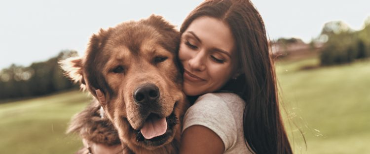 CBD products dogs health