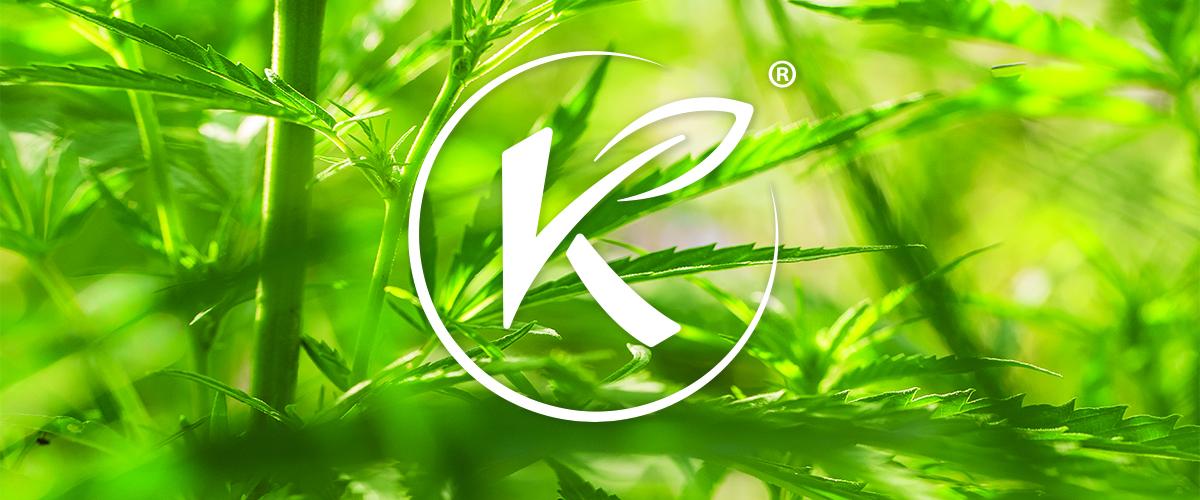 Kannaway Joins European Industrial Hemp Association